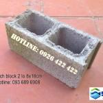 Gạch block 2 lỗ 8x18cm