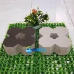 Gạch hoa mai trồng cỏ