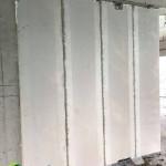 Tấm tường 1200x600x100mm