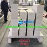 Test khả năng chịu tải uốn của tấm Panel 1200x600x75mm, 01 lưới thép fi4. Nếu gia cố thêm kết cấu giữa chắc chắn chịu tải uốn cao gấp 02 lần hiện nay.